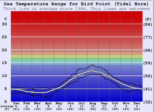 Bird Point (Tidal Bore) Water Temperature Graph