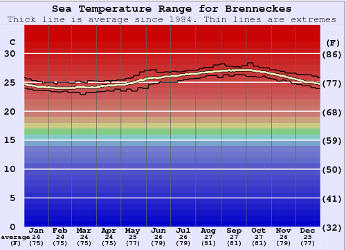 Brenneckes Water Temperature Graph