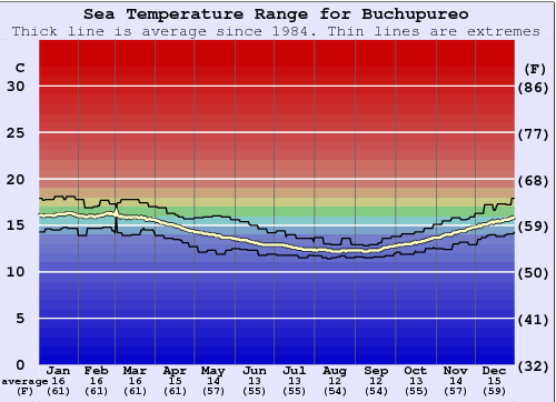 Buchupureo Water Temperature Graph