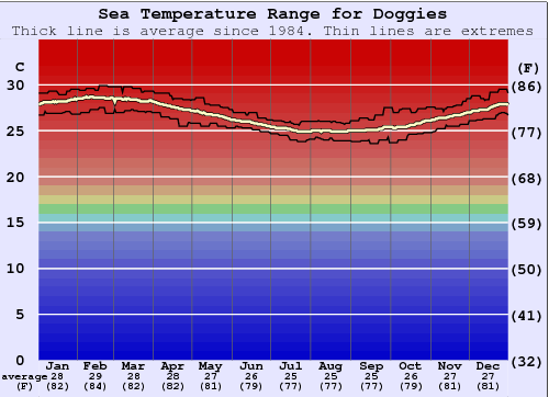 Doggies Water Temperature Graph