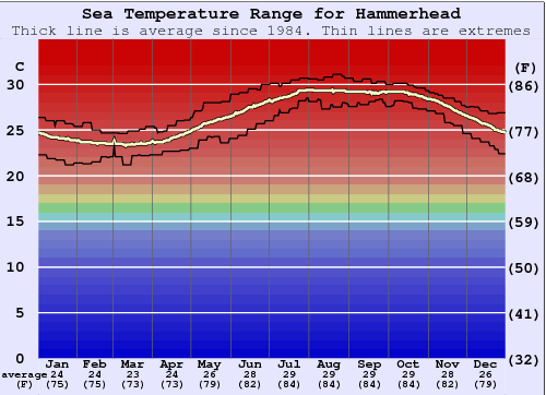 Hammerhead Water Temperature Graph