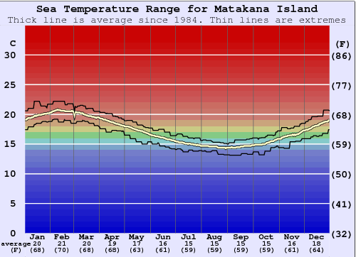 Matakana Island Water Temperature Graph