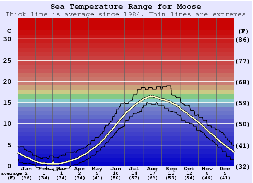 Moose Water Temperature Graph