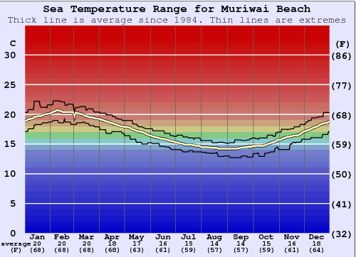 Muriwai Beach Water Temperature Graph