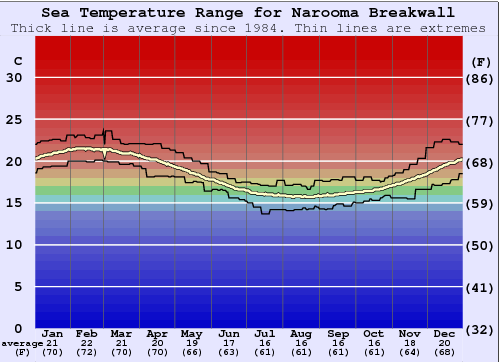 Narooma Breakwall Water Temperature Graph