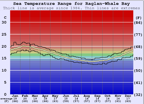 Raglan-Whale Bay Water Temperature Graph