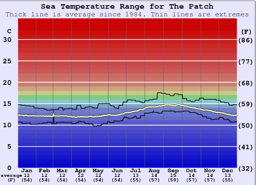 The Patch Water Temperature Graph