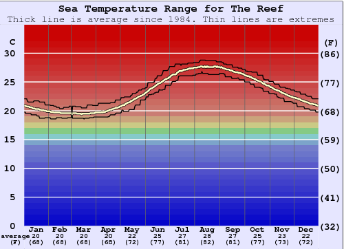 The Reef Water Temperature Graph