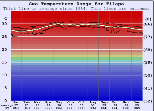 Tilapa Water Temperature Graph