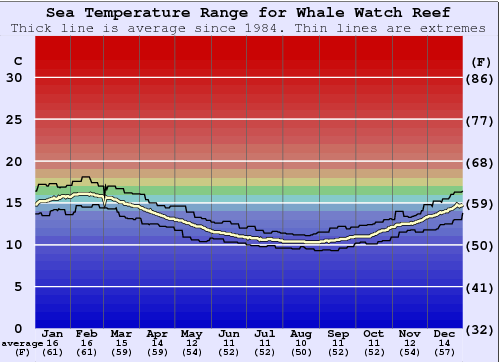 Whale Watch Reef Water Temperature Graph