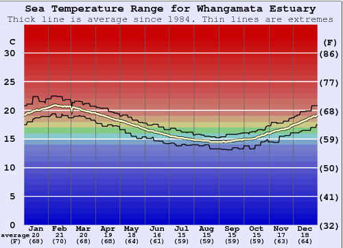 Whangamata Estuary Water Temperature Graph