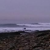 Point Grinder, Cabrillo Point