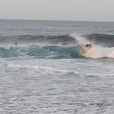 fantail, Dunes