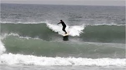 Surfing at Montauk Point, Montauk Point - Turtles photo