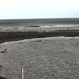Himatangi Beach