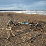 Drift Wood, Anglet - La Barre