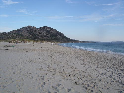 Louro (Playa Area Maior)