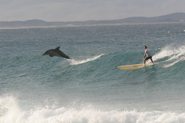Crescent Head Australia  City pictures : Crescent Head Surf Photo: 'Crescent Head Surf' by Sun Worship Eco ...