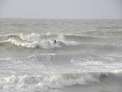 Surfer nord pas de calais
