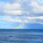 Rainbow surfing, Broad Cove