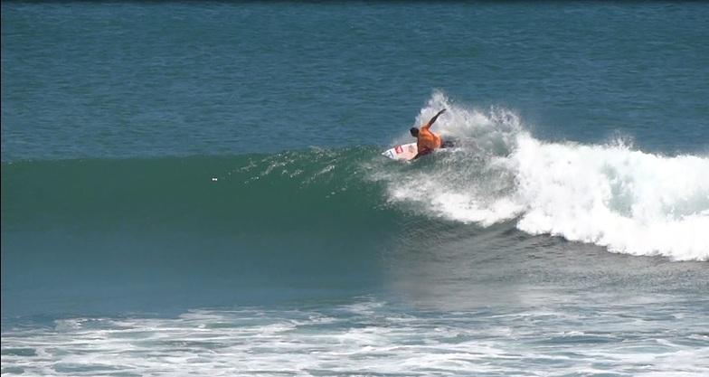 Burros August 2014