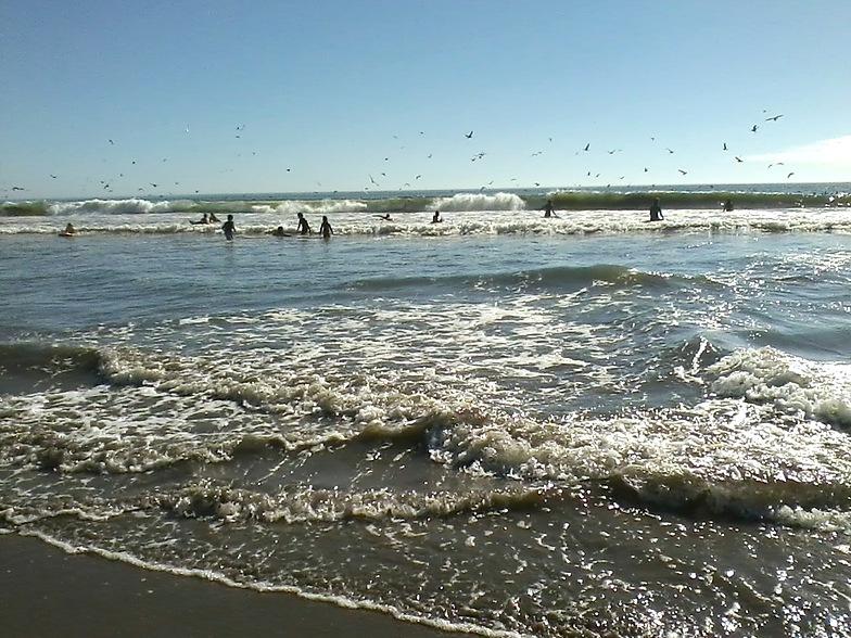 September Boogie Waves, Princeton Breakwater