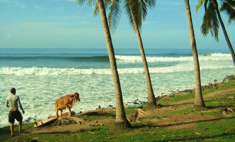 Punta Roca. El Salvador Central America