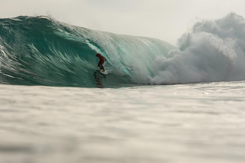 MAJESTIC SURFING CUP 2014 FINALS, Majestics