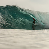 MAJESTIC SURFING CUP 2014 FINALS, Majestics