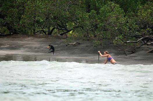 Real Surf Trips, Playa Negra