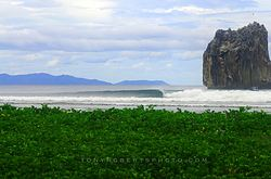 A Real Surf Vacation, Roca Bruja - Witch's Rock photo