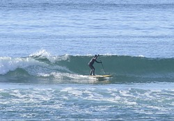 Joe Morgan - SUP Surfer, Arcadia photo