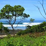 Real Surf Trips, Playa Negra