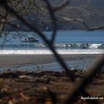 Boat Trip, Playa Negra