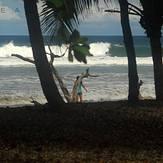 Jungle Juice, Playa Negra