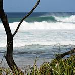 Fulfillment, Playa Negra
