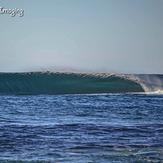 The Island Spreading it's wings, Shark Island (Cronulla)