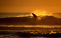 Port long boarder at sunrise, Port Macquarie-Town Beach photo