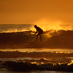 Port long boarder at sunrise, Port Macquarie-Town Beach