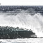 Devils Whip, Shark Island (Cronulla)