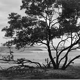 Irie Zone, Playa Negra