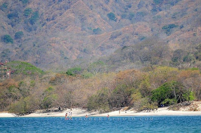 Sunday Paddle, Playa Negra