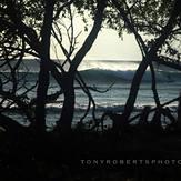 Consistency, Playa Negra