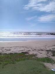 woolgoolga main beach with a bit of swell photo