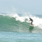 Great weekend for Surf!, Burros