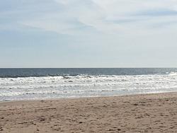 Favourite spot, Creswell Beach photo
