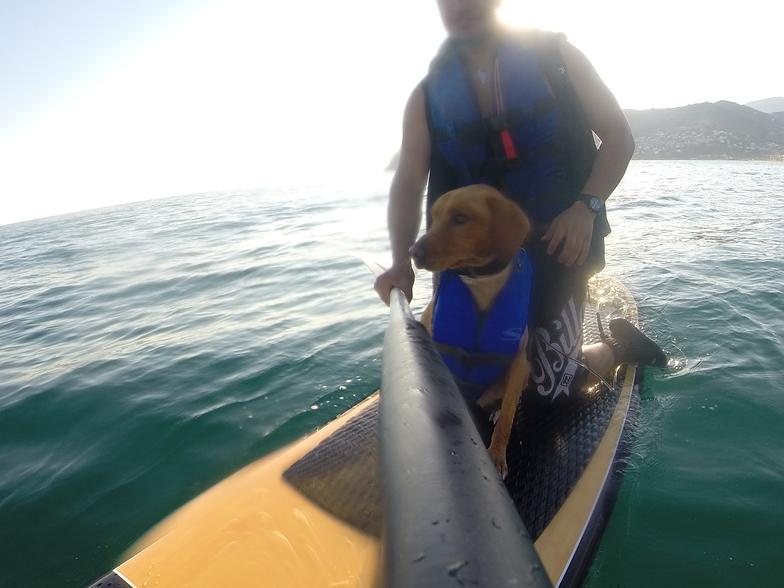 paddle surf con mi perro, La Herradura