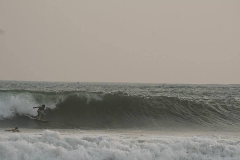 Kide Surfer, Dewata