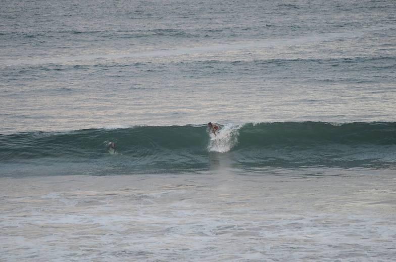 Nice Wave, Dewata