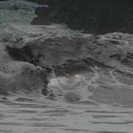 kapaniah hurricane swell